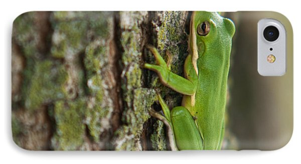 Green Tree Frog Thinking Phone Case by Douglas Barnett
