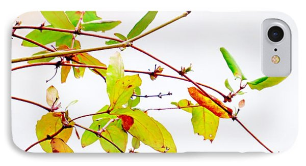 Green Twigs And Leaves IPhone Case by Craig Walters
