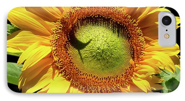 Greenburst Sunflower IPhone Case