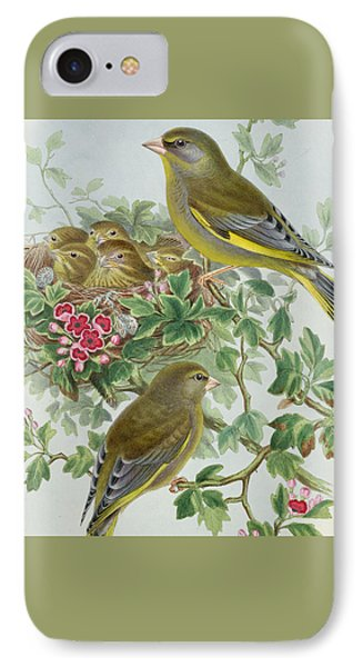 Greenfinch IPhone Case by John Gould