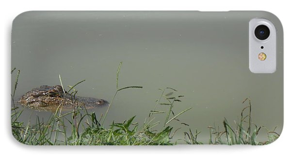 Greenwood Gator Farm IPhone Case