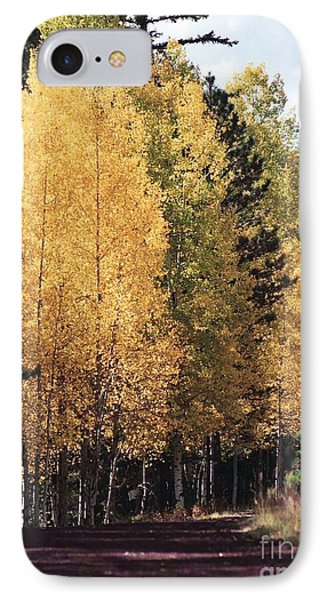 Greer Arizona Aspen Trees IPhone Case
