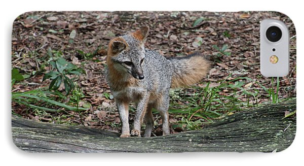 Grey Fox IPhone Case