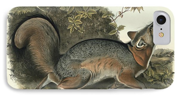 Grey Fox Phone Case by John James Audubon