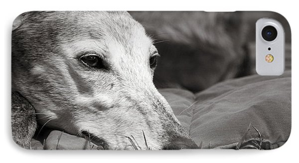 IPhone Case featuring the photograph Greyful by Angela Rath