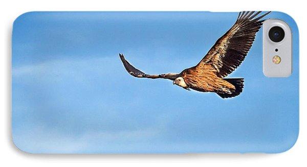 Griffon Vulture IPhone Case by Meir Ezrachi
