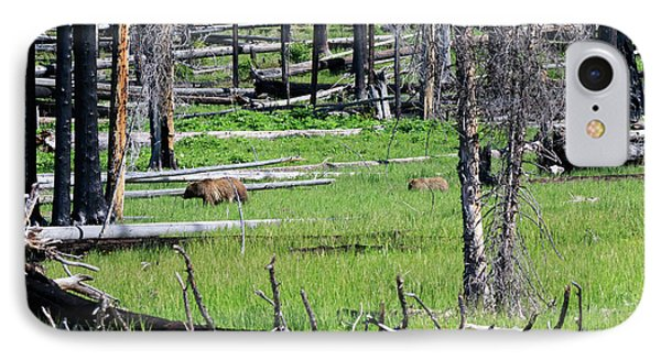 Grizzly Bear And Cub Cross An Area Of Regenerating Forest Fire Phone Case by Louise Heusinkveld