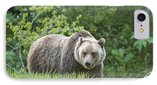 IPhone 7 Case featuring the photograph Grizzly Bear by Gary Lengyel