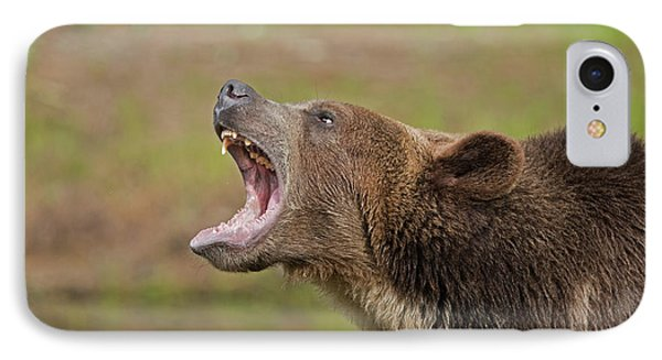 Grizzly Bear Growl IPhone Case