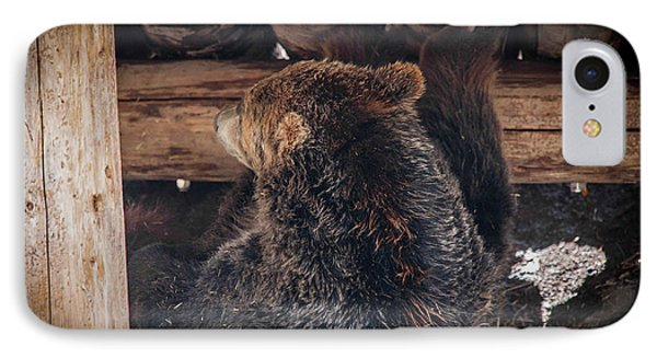 Grizzly Bear Under The Cabin Phone Case by Dan Pearce