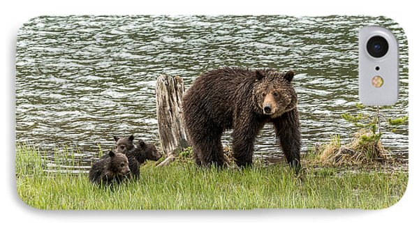 IPhone Case featuring the photograph Grizzly Mom And Cubs by Yeates Photography