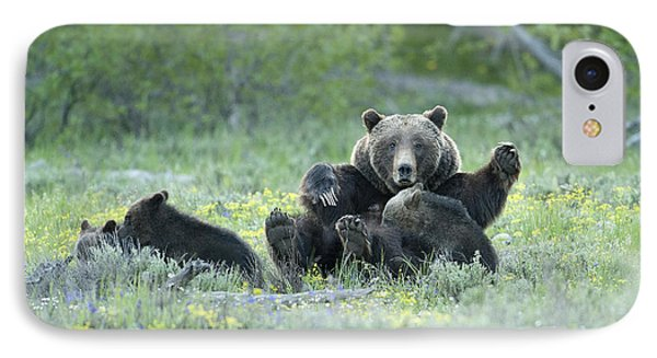 Grizzly Romp - Grand Teton IPhone Case by Sandra Bronstein