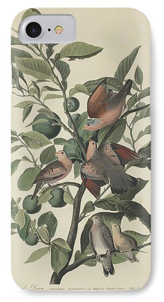 Ground Dove IPhone 7 Case by Rob Dreyer