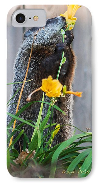 Groundhog And Flowers IPhone Case