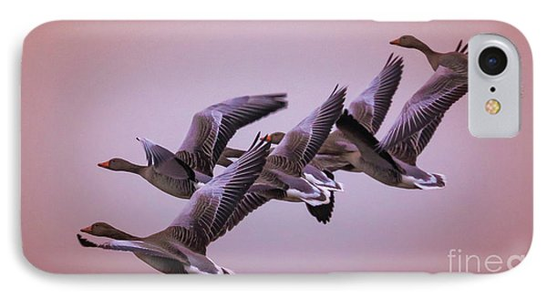 IPhone Case featuring the photograph  Group Flight  by Franziskus Pfleghart