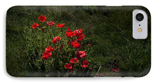 Group Of Poppies Phone Case by Svetlana Sewell