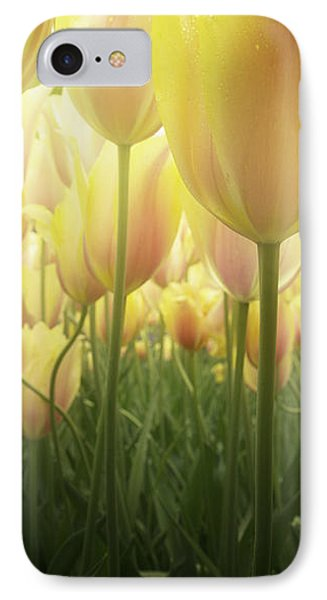Growing  Tulips  IPhone Case by Anastasy Yarmolovich