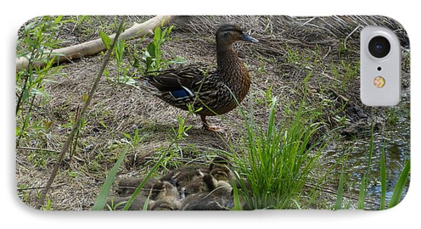 IPhone Case featuring the photograph Guarding The Ducklings by Donald C Morgan