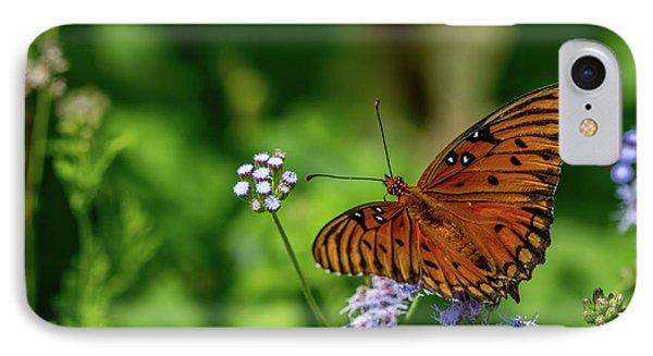 Gulf Fritillary Butterfly IPhone Case