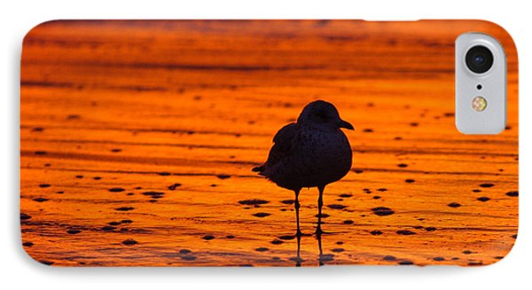 Gull Caught At Sunrise IPhone Case by Allan Levin