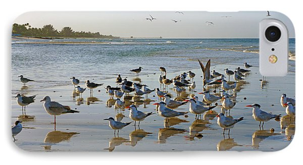 Gulls And Terns On The Sanbar At Lowdermilk Park Beach IPhone Case