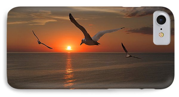 Gulls Flying Towards The Sun IPhone Case by Randall Nyhof