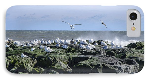 Gulls On Rock Jetty IPhone Case by Maureen E Ritter
