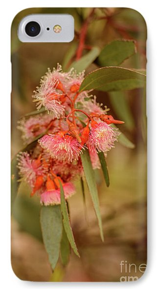 IPhone 7 Case featuring the photograph Gum Nuts 2 by Werner Padarin