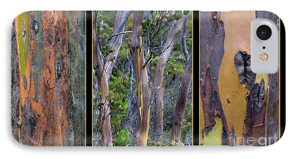 Gum Trees At Lake St Clair IPhone 7 Case by Werner Padarin