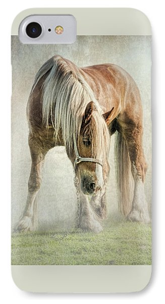 Gypsy In Morning Mist. IPhone Case by Brian Tarr