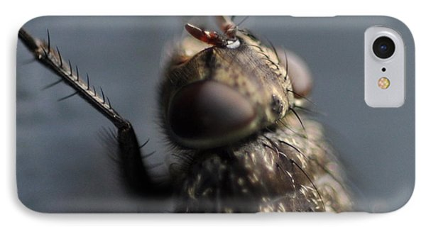 IPhone Case featuring the photograph Hair On A Fly by Glenn Gordon