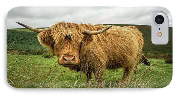 Hairy Coo  IPhone Case by Rob Hawkins
