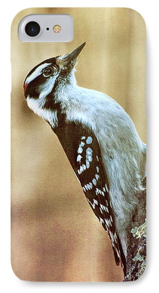 Hairy Woodpecker IPhone 7 Case