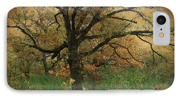 IPhone Case featuring the photograph Halloween Tree 2 by Scott Kingery