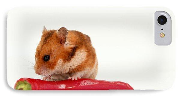 Hamster Eating A Red Hot Pepper Phone Case by Yedidya yos mizrachi
