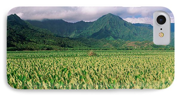 Hanalei Valley, Hawaii IPhone Case by Panoramic Images