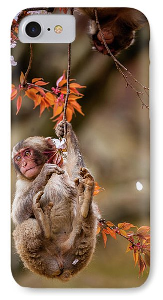 IPhone Case featuring the photograph Hang In There, Baby Redux by Rikk Flohr