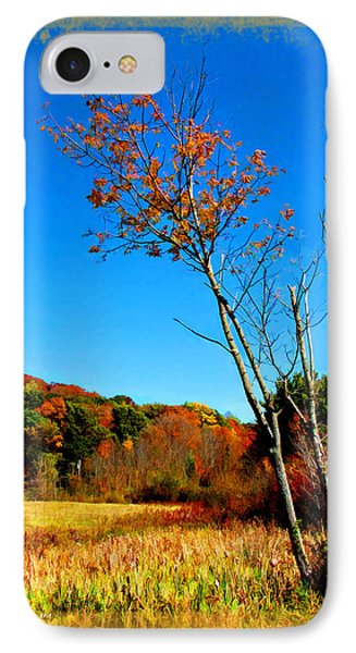 IPhone Case featuring the photograph Hanging On To Autumn by Joan  Minchak
