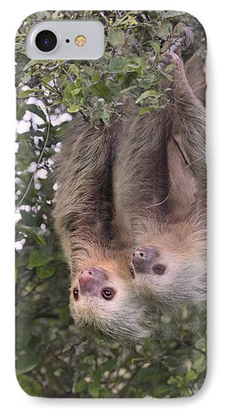 Hanging Out IPhone Case by Betsy Knapp