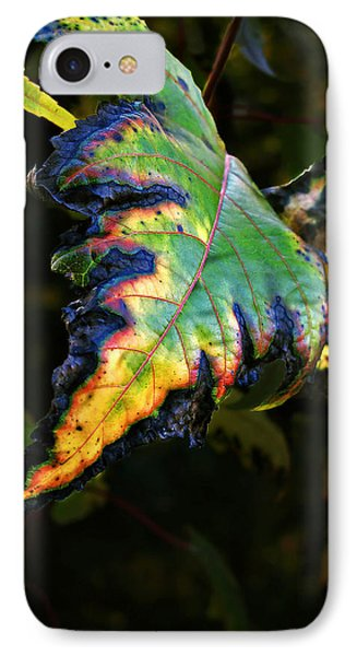 IPhone Case featuring the photograph Hanging Out by Joan  Minchak