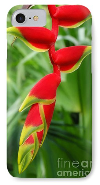 Hanging Tropical Splendor Phone Case by Sue Melvin