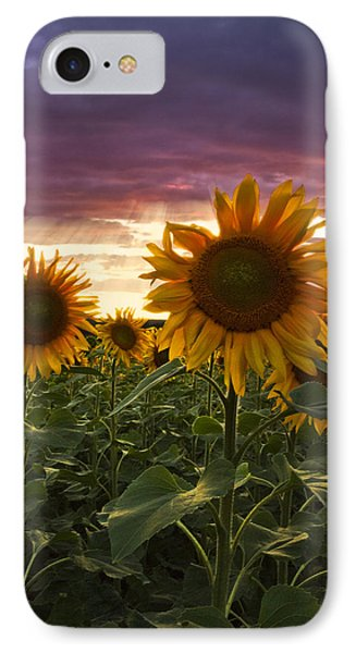 Happiness Is A Field Of Sunflowers Phone Case by Debra and Dave Vanderlaan