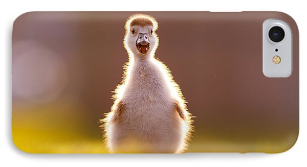 Happy Easter - Cute Baby Gosling IPhone Case by Roeselien Raimond
