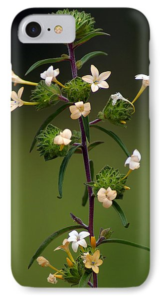 IPhone Case featuring the photograph Happy Flowers by Ben Upham III