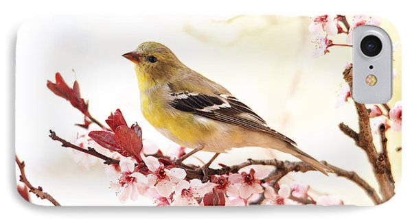 Happy Goldfinch IPhone Case