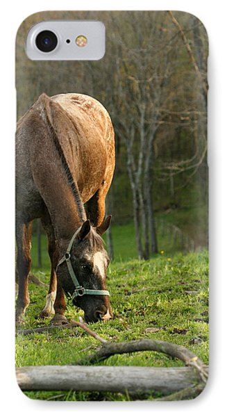 IPhone Case featuring the photograph Happy Grazing by Angela Rath