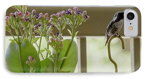 Happy Hummer IPhone Case by Anne Rodkin