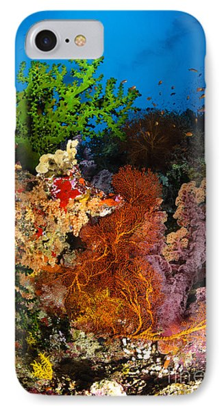 Hard Coral And Soft Coral Seascape Phone Case by Todd Winner