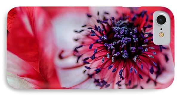 IPhone Case featuring the photograph Harmony Scarlet Poppy Anemone by Julie Palencia