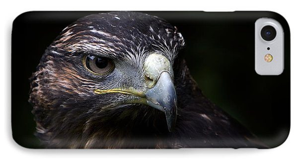 IPhone Case featuring the photograph Harris Hawk by Joerg Lingnau